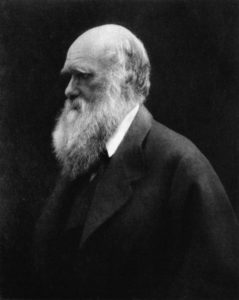 During the Darwin family's 1868 holiday in her Isle of Wight cottage, Julia Margaret Cameron took portraits showing the bushy beard Darwin grew between 1862 and 1866