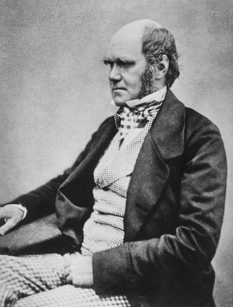 Three quarter length studio photo showing Darwin's characteristic large forehead and bushy eyebrows with deep set eyes, pug nose and mouth set in a determined look.